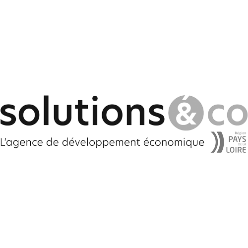 logo Solutions&Co
